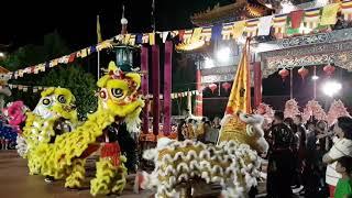 😁SPECIAL 🌟Đón Chào Xuân Mậu Tuất NYE 2018 Ming Yue Temple Chinese 明月居士林 pt 2