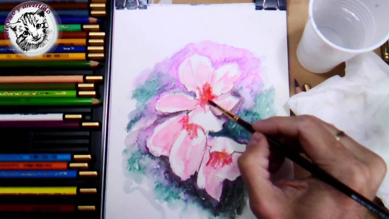 Como Pintar Flores con Lapices Acuarelables Paso a Paso y