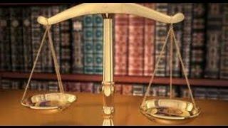 США 4161: В стране, где правит закон, как же это люди нелегально работают?
