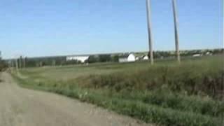 white tail deer running through the potato fields of maine