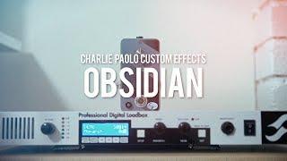 Charlie Paolo Custom Effects Obsidian Fuzz (demo)