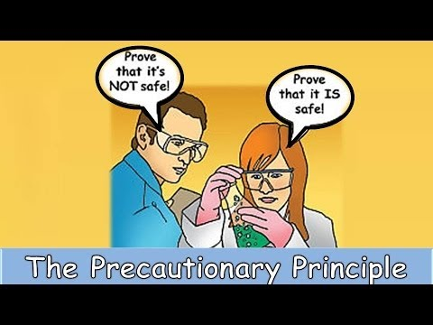What is the precautionary principle?