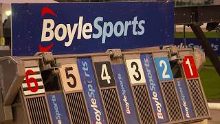 2017 BoyleSports Irish Greyhound Derby Final