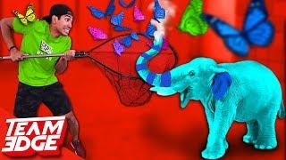 GIANT Elefun Challenge!!