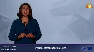 Section Lettres - Discipline : Français. L'essai, comprendre un sujet