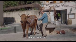 ある男と牛 (字幕版) - Trailer thumbnail