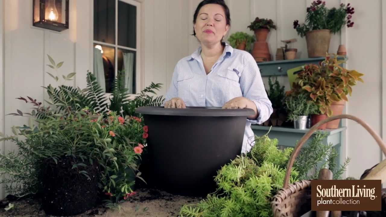 Front porch container gardening ideas - How To Plant A Fall Container Garden For Your Front Porch With Carmen Johnston