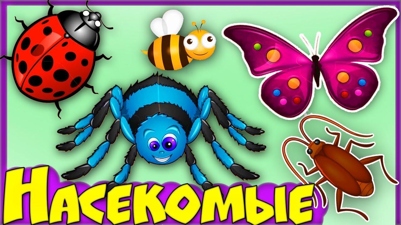 Знакомые насекомые-наши доу проект