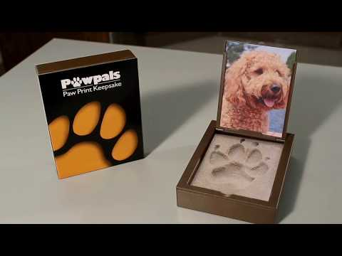 Pawpals Paw Print Casting Kit - Instant and Easy to Use