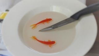 goldfish 3d art knife in bowl with fish