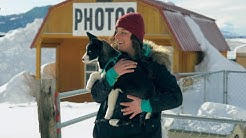 Building a life of meaning - An inspirational dogsled story