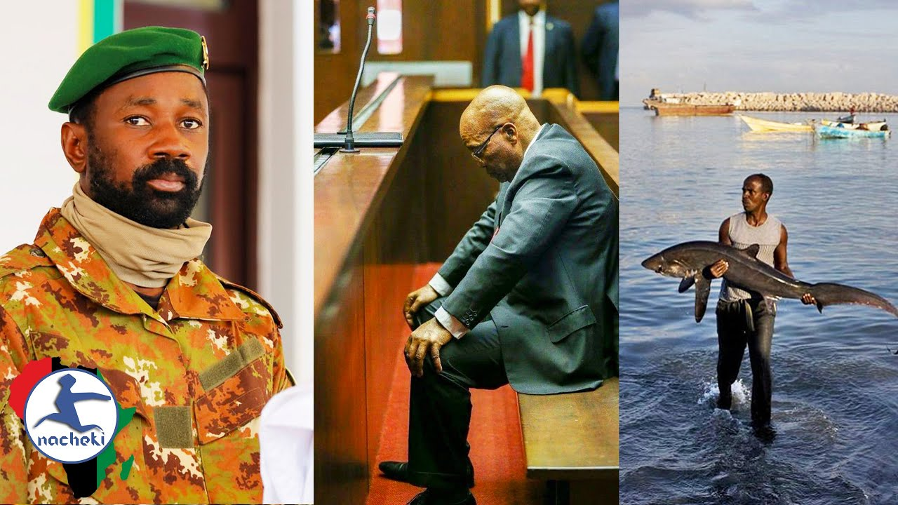 Mali's New President Escapes Assassination, Zuma's Trial Postponed, Somali New Law Protects its Fish