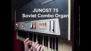 Junost 75 Vintage Soviet Combo Organ