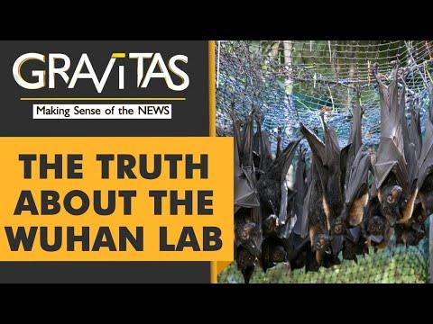 Gravitas: Caught On Camera: Bats locked up inside the Wuhan lab