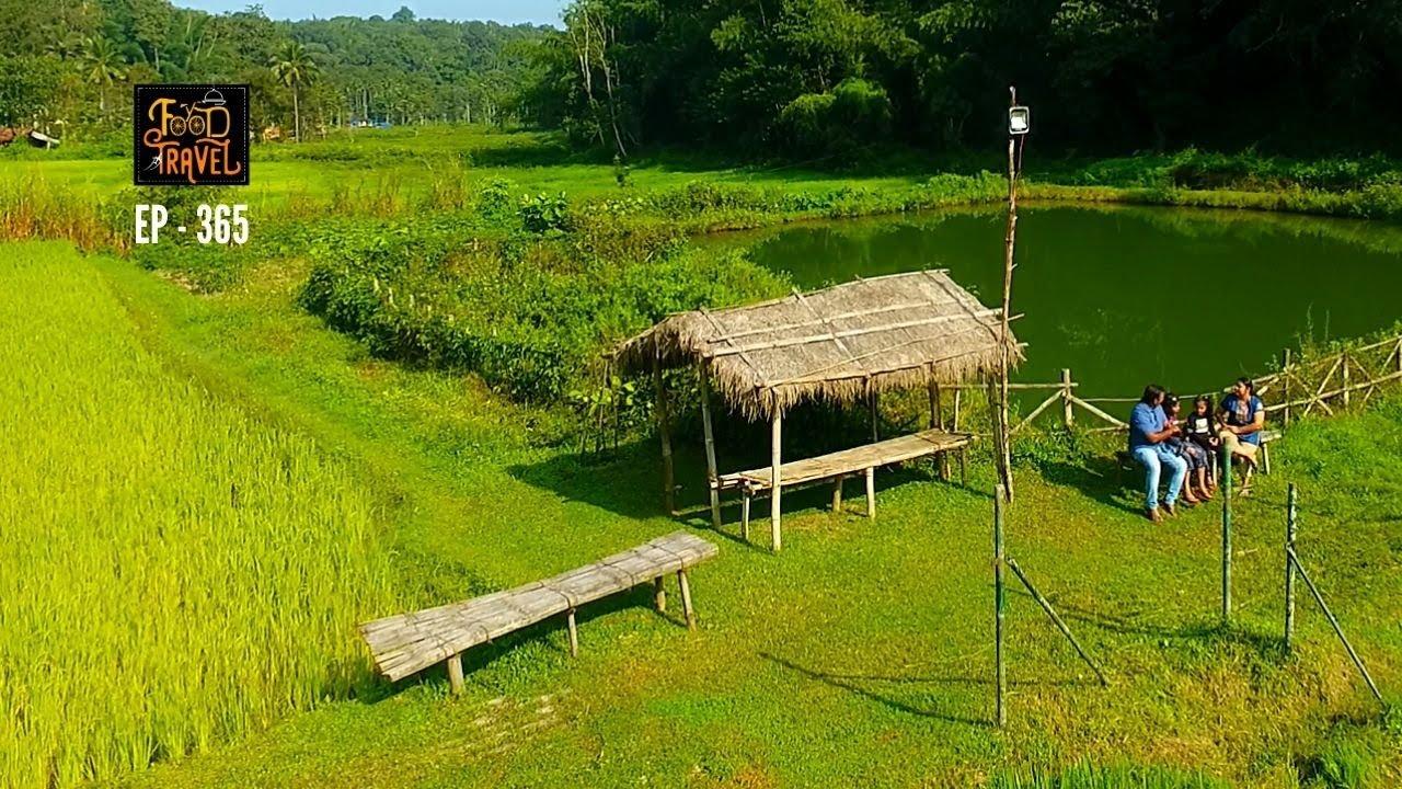 വയനാട്ടിൽ പോയി വയലിൽ താമസിക്കാം   Vayal Veedu Wayanad Resort  Near Muthanga Wildlife Sanctuary