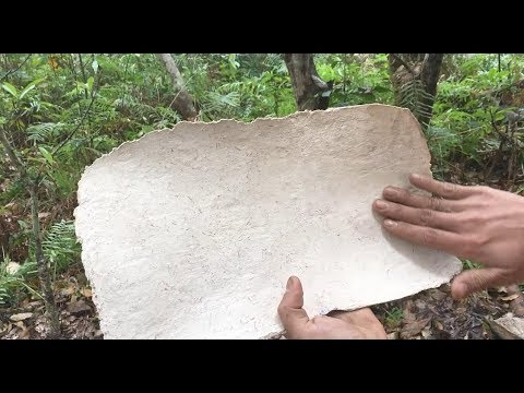 Primitive Technology: make Writing Paper part 1