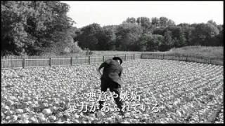 映画『白いリボン』予告編