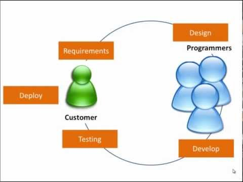 Introduction to the Software Development Lifecycle