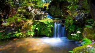 Down In The Valley w. Lyrics