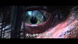 ブルーレイ&DVD『ジャックと天空の巨人』トレーラー8月7日リリース
