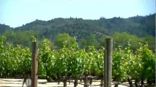 Napa California: Part 2 - Napa Winery Shuttle, Oxbow Market, Napa Downtown & The River Terrace Inn