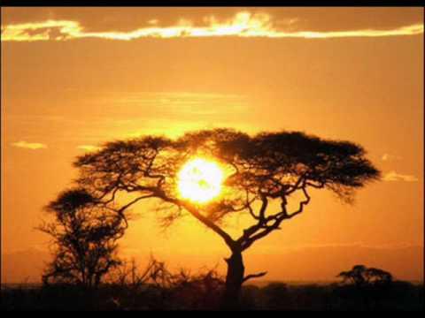 "Logic 9 pro Trance Tekno ""African Sun"""