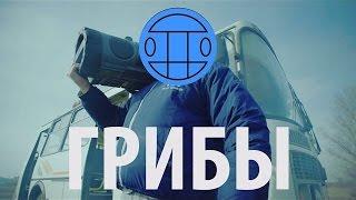 """РЕАКЦИЯ НА КЛИП # МС ХОВАНСКИЙ & СОБОЛЕВ - ПИВО ПЬЕТ [""""Тает Лед"""" гр. Грибы]"""