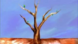 Árvore -o crescimento