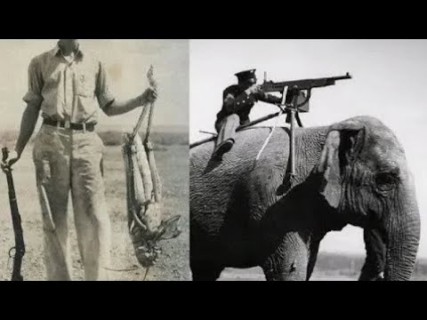 RARE HISTORIAL IMAGES YOU HAVE TO SEE BEFORE YOU DIE YouTube - 29 incredibly rare historical photographs youve probably never seen