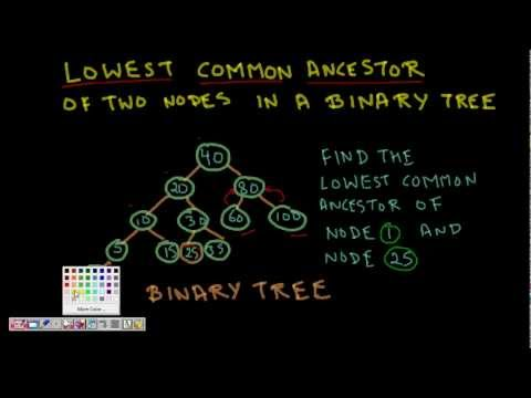 Programming Interview: Lowest Common Ancestor Binary Tree
