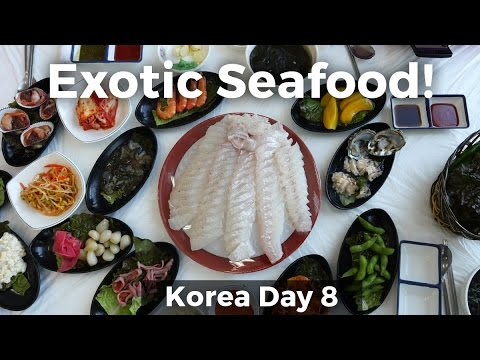 Exotic Korean Seafood in Gunsan (Day 8)