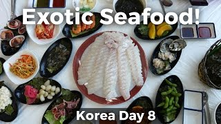 Exotic Korean Seafood in Gunsan, South Korea! (Day 8)