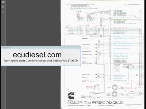 mins L10 N14 M11 Wiring diagram - YouTube M Celect Plus Wiring Diagram on ecu wiring diagram, pcm wiring diagram, ism wiring diagram, ecm wiring diagram, isx wiring diagram, isb wiring diagram, isl wiring diagram, interactive wiring diagram,