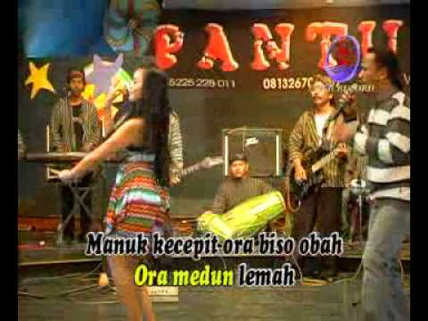 Manuk Kecepit - Ririn feat Romli