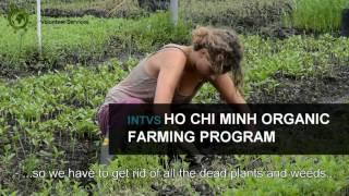 INTVS Ho Chi Minh Organic Farming Program