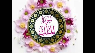 Surah Mulk ki Tilawat : Quran Hadees