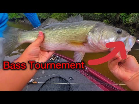 Savannah River Bass Tournament