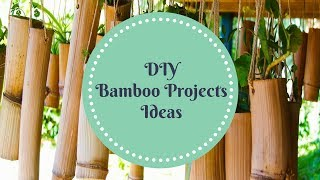 DIY Bamboo Projects Ideas