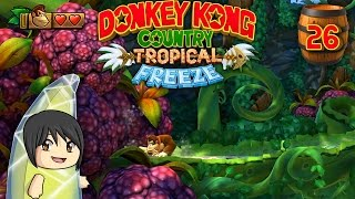 "Donkey Kong Country Tropical Freeze - Part 26: ""Fruit Factory"""