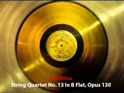 The Voyager Interstellar Record - 31/31 String Quartet No. 13 In B Flat, Opus 130, Cavatina