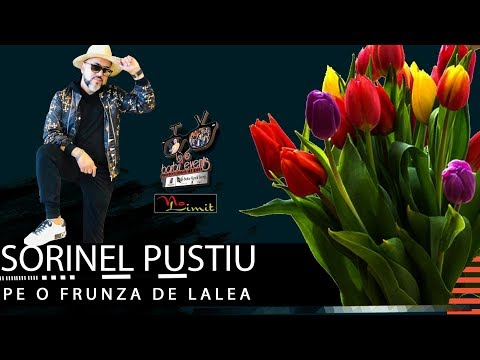 Sorinel Pustiu ❌ Pe o frunza de lalea NEW LIVE 2020 @ClubNoLimit By Barbu Events