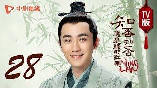 知否知否应是绿肥红瘦【TV版】28(赵丽颖、冯绍峰、朱一龙 领衔主演)