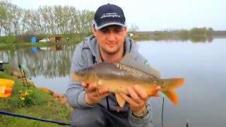 рыбалка видео на карпа в украине видео