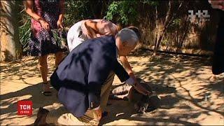 Віце президент США Майк Пенс став на коліно перед кенгуру