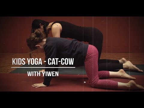 no4 kids yoga  cat/cow  youtube
