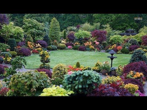 Best Ideas Top 80 Garden Small Backyard Landscaping