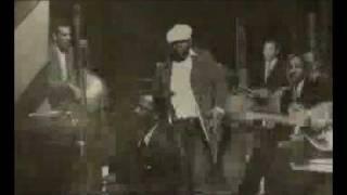 Raekwon - Pyrex Vision (Video Clip)