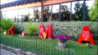 Camping Village Roma Rome Italy Video tourist information