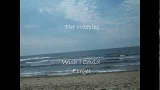 Watch Weepies Wish I Could Forget video