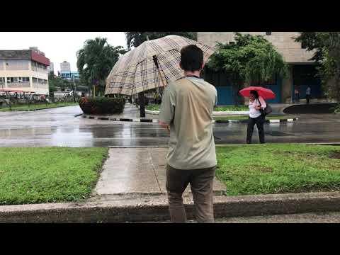 Video de Boyeros